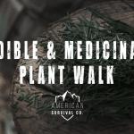 Plant Walk – AR